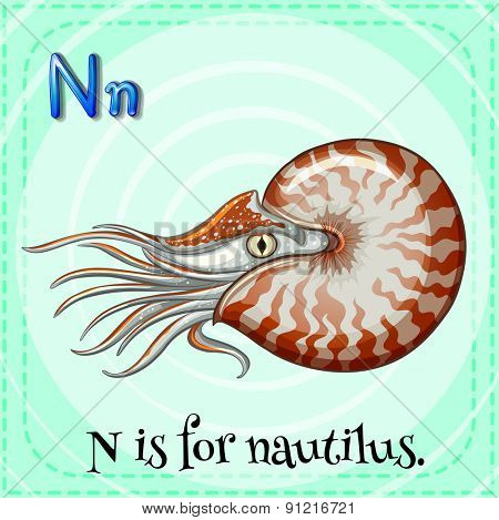 Flashcard alphabet N is for nautilus