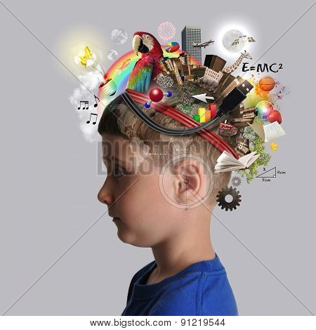 Education Boy With School Subjects On Mind