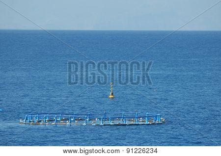 Fish Farm in the Atlantic Ocean