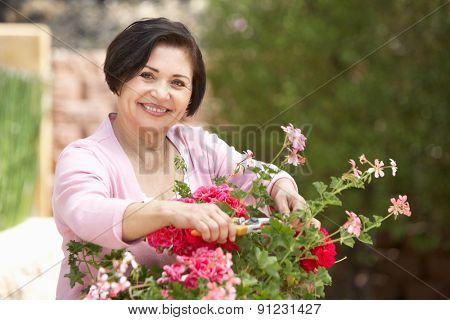 Senior Hispanic Woman Working In Garden Tidying Pots