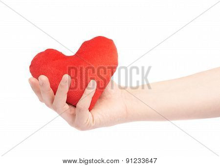Gently holding plush red heart isolated