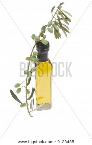 Raw Olives With Oil On White