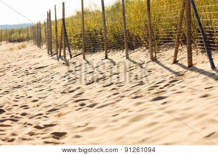 Sandy Beach In Summer And Grassy Dunes With Fence