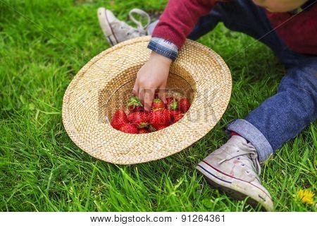 Child Eating Strawberries