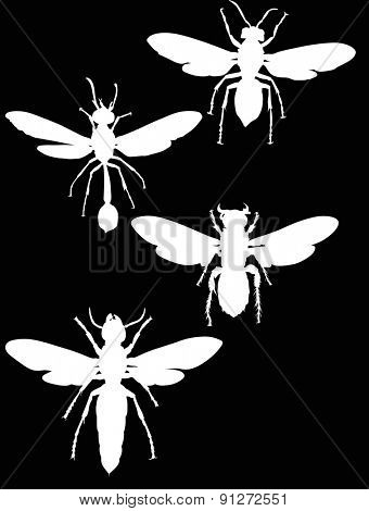 illustration with wasp silhouettes collection isolated on black background