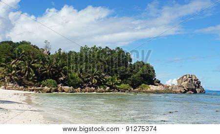 Natural Tropical Bay