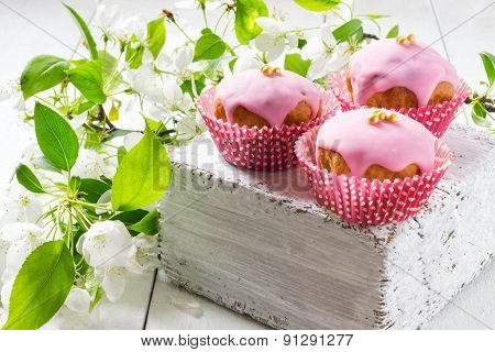 Cupcakes With Pink Frosting And A Branch Of Apple Blossoms