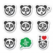 image of panda  - Vector icons set of cute panda character expressing anger - JPG