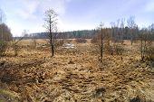 stock photo of boggy  - Landscape - JPG