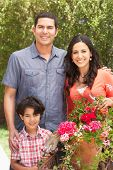 pic of hispanic  - Hispanic Family Working In Garden Tidying Pots - JPG