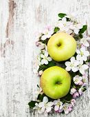 stock photo of apple blossom  - apples and apple tree blossoms on a old wooden table  - JPG