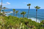picture of southern  - A view from beautiful Heisler Park in Laguna Beach - JPG