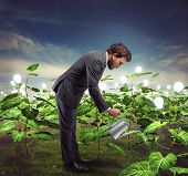 image of nurture  - Businessman take cares and nurtures new ideas - JPG