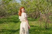 picture of orchard  - lovely red - JPG