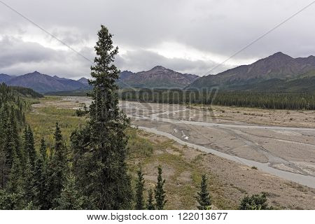 Braided Teklanika River in Denali National Park in Alaska