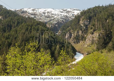 A river runs through the forests and mountains of Alaska ** Note: Shallow depth of field
