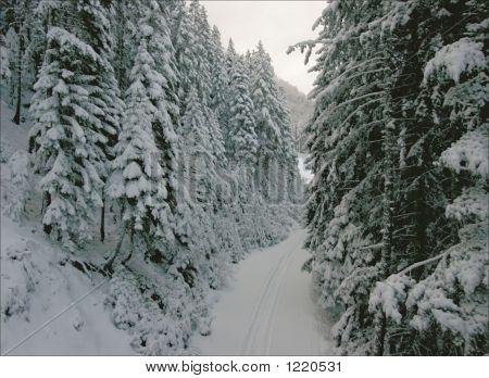 Ski Resort Bansko In Bulgary.