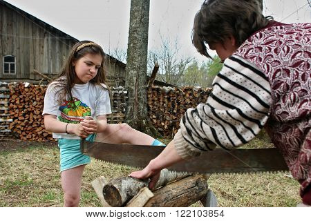 Lipovec village Tver region Russia - May 6 2006: Russian peasants villagers mother and daughter sawn dry timber for firewood using two-handed saw.