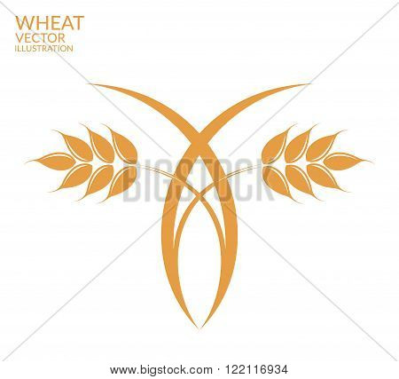 Abstract cereal plant on white background. (EPS 10)