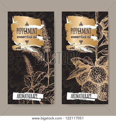 Set of two labels with Mentha piperita aka Peppermint and Citrus bergamia aka bergamot sketch on black and golden background. Aromatherapy series.