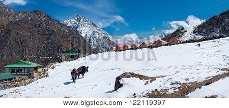 Village in Gokyo valley in Himalayas,Sagarmatha National Park, Nepal