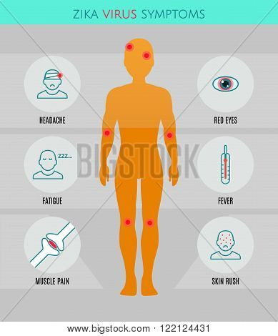 Zika virus symptoms infographics with stick figures icons human silhouette and text