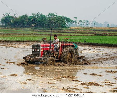 CHITVAN, NEPAL - APR 02 , 2014: Tractor plowing a rice field in Chitvan, Nepal on April 02, 2014.