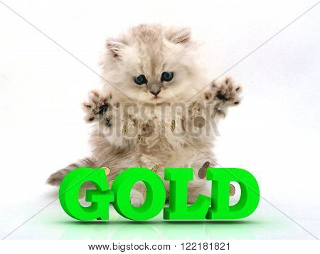 GOLD Feathery kitty with feathery raised upwards paws on white background