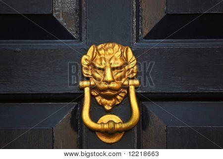 Close-up of lion headed door knocker on painted wooden door