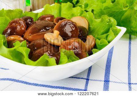Marinated Mushrooms With Lettuce Leaves.