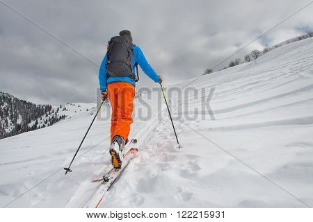 Ski tours on the trail by a lonely man