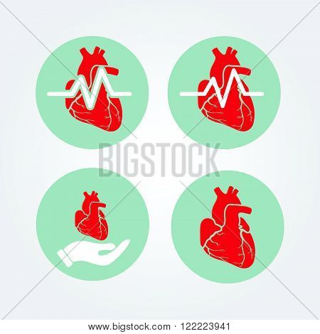 Human heart icon set with cardiogram and human hand. Medical icon.
