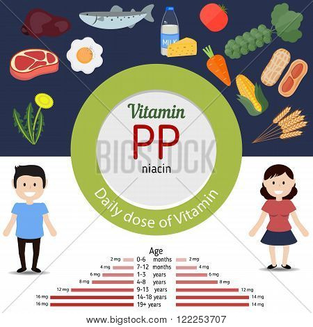 Vitamin PP and vector set of vitamin PP rich foods. Healthy lifestyle and diet concept. The daily dose of vitamin PP.
