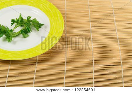 Concept image for weight loss or diet. One bunch of parsley on a plate. With space for text.