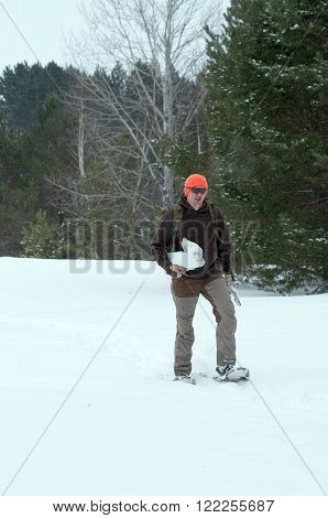 Trapper snowshoeing out after check his trap line