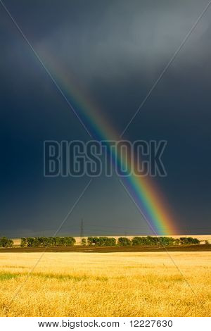 wheat field and rainbow on dark cloudy sky