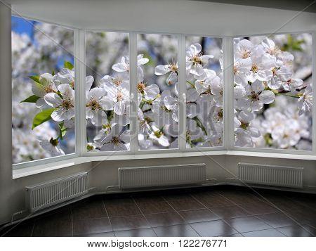 window in veranda overlooking the garden with blossoming cherry-tree