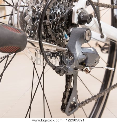 Hand with screwdriver adjusting bicycle's rear derailleur