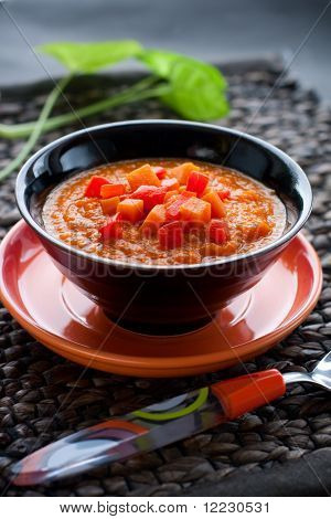 spicy vegetable soup with pumpkin,bell pepper,tomato