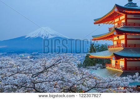 Mountain Fuji and red pagoda in cherry blossom sakura season