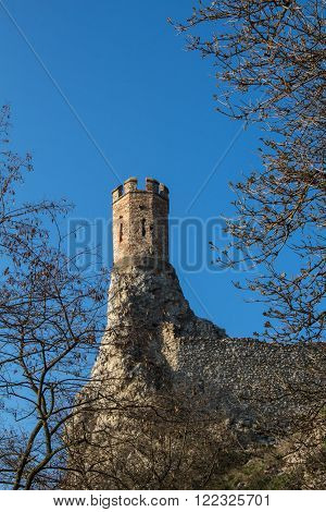 Castle Devin in Slovakia built on the rocks as a former fortress. Maiden Tower built on the edge of a slim rock. Tree twigs in foreground. Bright blue sky.