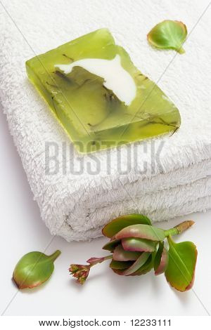 home spa with algae soap on white towel and green leaf