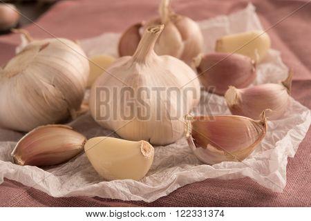 raw garlic on a white tissue paper