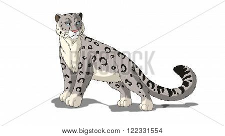 Snow Leopard Isolated on White Background