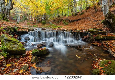 Autumn in the forest mountain stream. Beautiful autumn forest rocks covered with moss. Mountain river with rapids and waterfalls. Nearby is the tourist route through the village Pylypets.Carpathian .