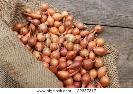 Natural small onion in a bag on a wooden board