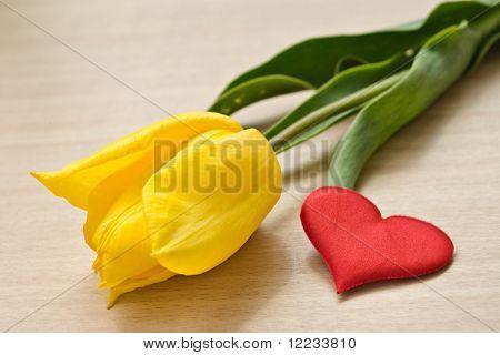 tulipán amarillo y corazón rojo en la tabla de color beige