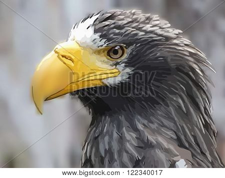 Steller's sea eagle on blurred background vector