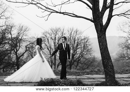 Happy Newlywed Couple Holding Hands & Smiling In Park B&w