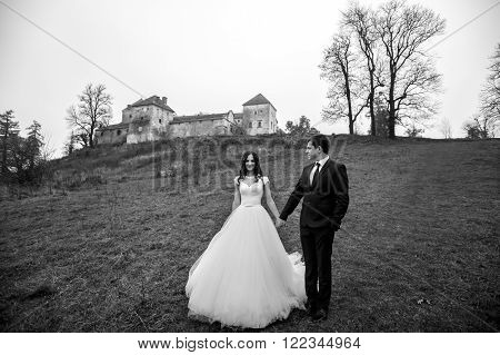 Beautiful Romantic Couple Of Newlyweds Holding Hands Near Old Castle In Field B&w